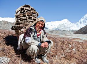 Sherpa1